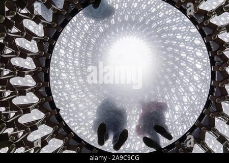 En una torre de 17 metros de altura, la colmena es una sorprendente instalación en el corazón de un wildflower meadow que recrea la vida en el interior de una colmena Foto de stock