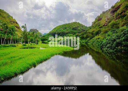 Imagen de una entrada vista del valle Waimea, Oahu, Hawaii Foto de stock