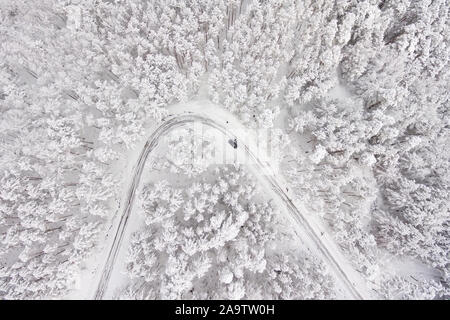 Coche en carretera en invierno a través de un bosque cubierto de nieve. La fotografía aérea de una carretera en invierno a través de un bosque cubierto de nieve. Alta montaña .