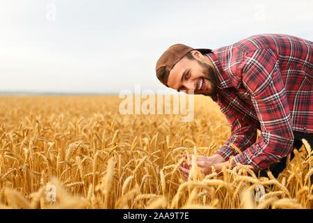 Hombre Barbado sonriente Celebración espigas de trigo sobre un fondo de un campo de trigo. Feliz agrónomo agricultor cuida de su cosecha para la rica cosecha de Sunset