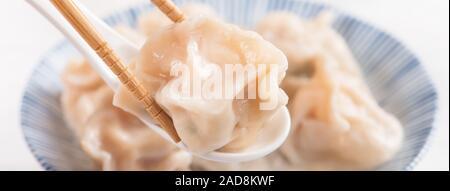 Fresco, sabroso cerdo hervido, camarón dumplings gyoza sobre fondo blanco con salsa de soja y los palillos de cerca el estilo de vida. Concepto de diseño casero.