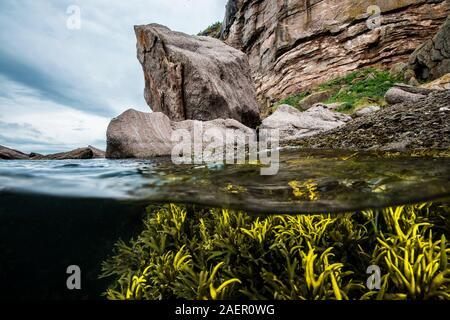 Paisaje sobre y bajo la superficie del agua, la isla Bonaventure, Golfo de San Lorenzo, Canadá