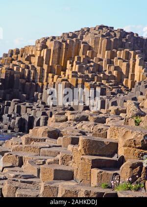 Enormes columnas de basalto de la Calzada del Gigante, Condado de Antrim, Irlanda del Norte, Reino Unido.