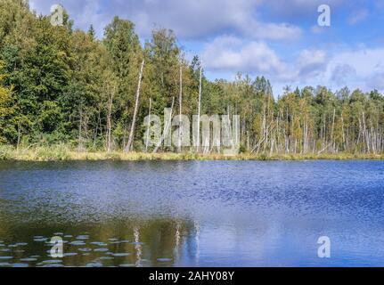 Vista sobre el lago Jezioro Francuskie (Francés) Reserva Natural Dylewo colinas parque paisajista, Ostroda County en Polonia.