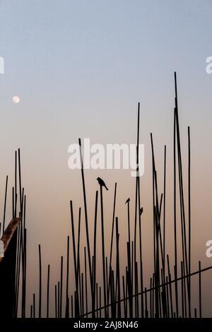 A través de una construcción en Bangladesh