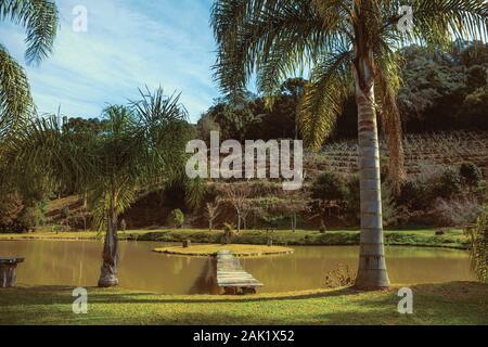 Pasarela de madera va a una pequeña isla en el estanque de un jardín con palmeras, cerca de Bento Gonçalves. Un país productor de vino de la ciudad en el sur de Brasil.