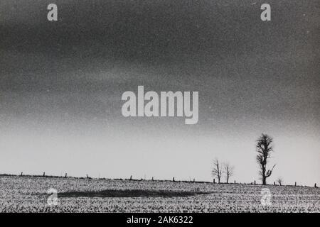 Minimalismo de los años setenta fotografía vintage en blanco y negro de un campo vacío