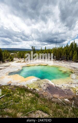 En la primavera de Esmeralda Norris Géiser Basin en el Parque Nacional Yellowstone, Wyoming, EE.UU.