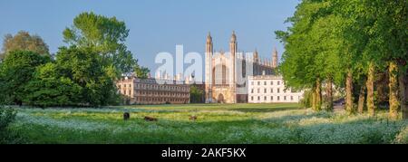 Reino Unido, Inglaterra, Cambridgeshire, Cambridge, la espalda, el King's College, la Capilla de King's College
