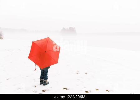 Un niño pequeño que toma la vista de un lago niebla.
