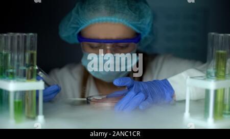 Scientist tomando muestras de carne en placa de Petri de nevera, análisis de tejidos infectados