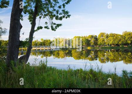 Silueta única y fila de Acer - Arce árboles en la distancia reflejada en el río Mille-Iles al amanecer a finales de verano, Ile des Moulins, Terrebonne antiguo