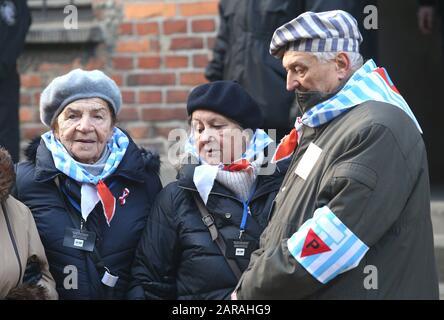Oswiecim, Polonia. 27 de enero de 2020. Antiguos prisioneros del campo de concentración de Auschwitz-Birkenau. 75º aniversario del día de la liberación de Auschwitz y de la memoria del Holocausto. El mayor campo de concentración y exterminio nazi alemán, KL Auschwitz-Birkenau, fue liberado por el Ejército Rojo el 27 de enero de 1945. Crédito: Damian Klamka/Zuma Wire/Alamy Live News