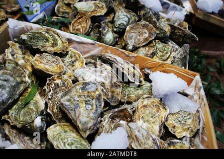 Ostras frescas en hielo para la venta en un mercado de mariscos.
