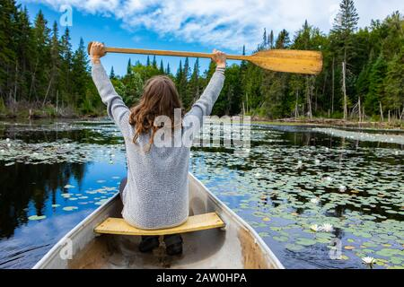 Vista trasera del joven turista que sostiene remar levantado mientras que sentado en canoa montar en lago con waterlilies. Durante el viaje al norte de Quebec en Canadá