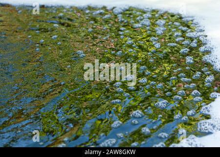 Burbujas, ondulaciones, espuma y reflejos en el agua