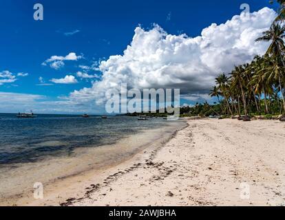 2019: Playa tropical de arena blanca de Bohol, Philiipines
