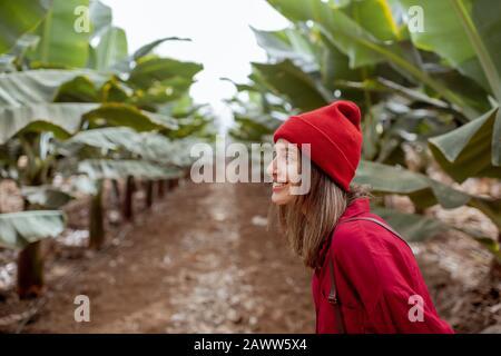 Mujer como turista o campesina vestida casualmente con camisa roja y sombrero caminando en la joven plantación de plátanos. Concepto de turismo verde o cultivo de frutas exóticas