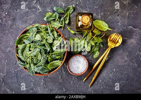 Ingredientes para el menú de fitness: Hojas de col rizada fresca en un Bol con sal marina y aceite de oliva y utensilios de ensalada sobre fondo de hormigón oscuro, horizontal o.