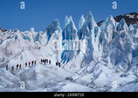 Turistas trekking en Glaciar Perito Moreno en el Parque Nacional los Glaciares cerca de el Calafate en Argentina, Patagonia, Sudamérica. Foto de stock