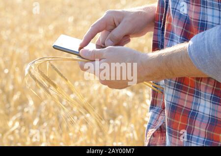 Agricultor utiliza su tablet pc en el campo listos para la cosecha de trigo