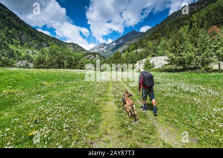 Senderismo con perro en los Pirineos