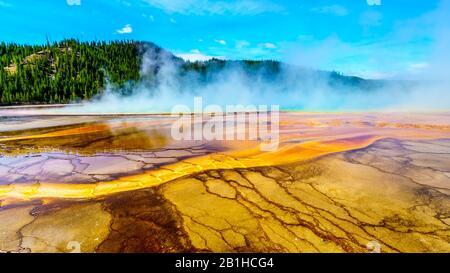 Los Coloridos Sombreros Bacterianos Del Grand Prismatic Spring En Yellowstone National Park, Wyoming, United Sates