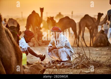 Hombres nómadas de la tribu con turbans tradicionales regatean por los precios entre sus camellos en la feria de camellos y ganado, Pushkar Mela, Pushkar, Rajasthan