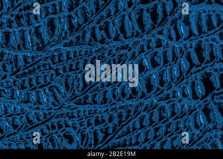 Textura de piel auténtica de patente con escamas en relieve reptiles, patrón de tendencia, fondo azul natural