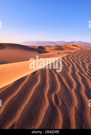 Estados Unidos, Estados Unidos De América, Nevada, Parque Nacional Del Valle De La Muerte, Dunas De Arena De Mesquite, Sierra Nevada, California