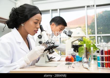 Dos científicos trabajan en laboratorio. La joven investigadora y su supervisor senior están realizando investigaciones sobre el equipo de laboratorio.