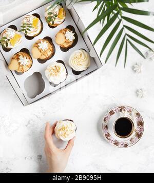 Pastelitos decorados en forma casera en una caja blanca cerca del café negro y una planta verde sobre fondo blanco. Mujer sosteniendo un cupcake.
