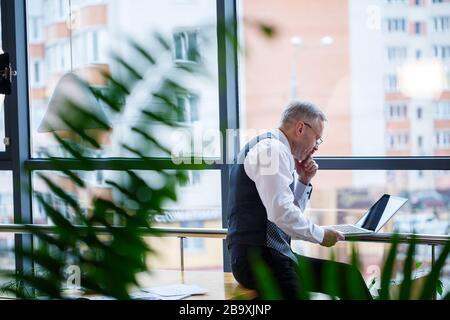 Hombre de negocios adulto, maestro, mentor trabajando en un nuevo proyecto. Se encuentra junto a una gran ventana en la mesa. Mira la pantalla del portátil.