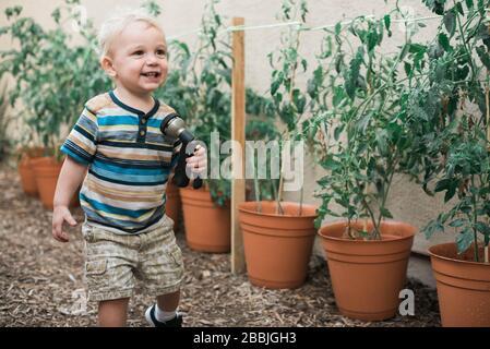 Niño pequeño creciendo plantas de tomate en macetas.
