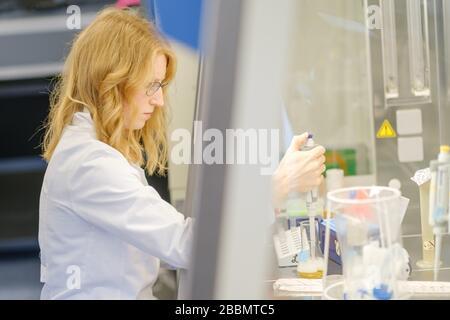 Brunswick, Alemania. 1 de abril de 2020. La científica Katharina Kleilein está investigando la densidad óptica de un cultivo bacteriano en el laboratorio estéril de la empresa de ciencias biológicas Yumab. La empresa de puesta en marcha realiza investigaciones sobre el desarrollo de anticuerpos humanos y, por lo tanto, está tratando de desarrollar fármacos contra Covid-19. Crédito: OLE Spata/dpa/Alamy Live News