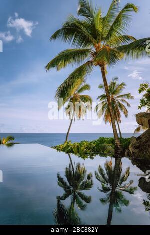 Piscina infinita con cocoteros y vistas al océano.