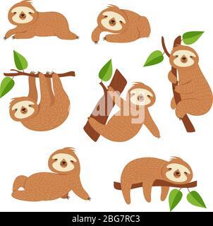 Lindos perezosos. Cartoon perezoso colgado en la rama del árbol. Bebé selva animal vector aislado personajes. Perezoso perezoso salvaje, animales de la fauna lento en la ilustración del árbol
