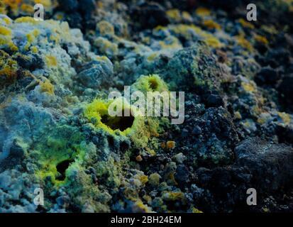 Primer plano de un fumarol volcánico de sólo unos pocos centímetros rodeado por un delicado anillo de cristales de azufre, Área geotérmica de Námafjall, ne Foto de stock