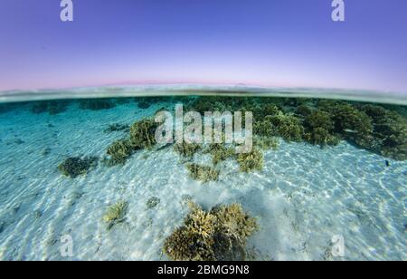 Sobre bajo la imagen dividida de aguas poco profundas de una vista costera típica a lo largo de la costa del Mar Rojo.