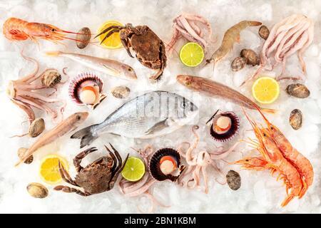 Pescado y mariscos variedad plana se depositan, tirados desde arriba sobre un fondo blanco, sobre hielo, con limones y limas