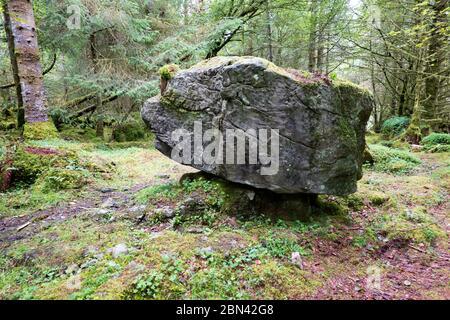 Cavan Burren Park, Big Rock in the Forest, Ice Age Glaciers, Co. Cavan, Irlanda,