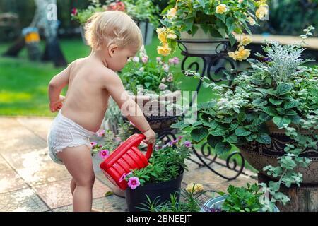 Cuate adorable niño pequeño rubio caucásico en blanco pañal riego maceta de flores con lata de plástico rojo al aire libre. Divertido bebé niño jardín planta en