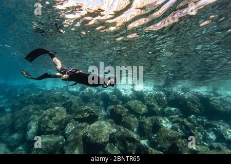 Buceo submarino bajo el agua de Tenerife, Islas Canarias, España.