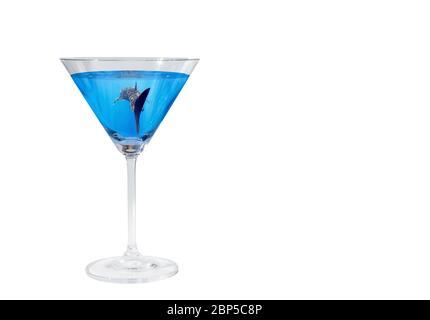 Sharktini: Tiburón ballena (Rhincodon typus) nadando en un vidrio martini sobre un fondo transparente, el Océano Pacífico y Estados Unidos, color