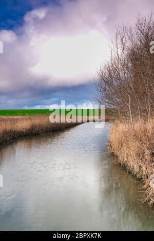 Paisaje en los países Bajos con un río, pastos y un cielo dramático, reflejo en el agua. Los árboles en el fondo.