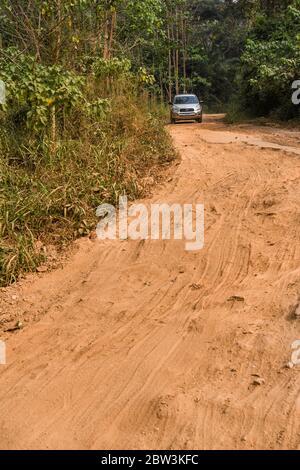 África, África Occidental, Togo, Kpalime. Un vehículo todoterreno conduce por un camino de tierra a través de la selva togolesa.