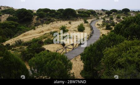 Un sinuoso paseo marítimo de madera a través de las dunas cerca de Matalascañas, provincia de Huelva, Andalucía, España Foto de stock