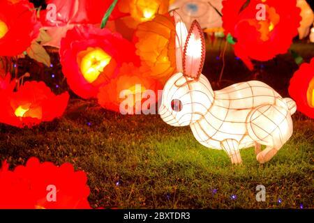 Linterna de conejo para el festival chino de mediados de otoño
