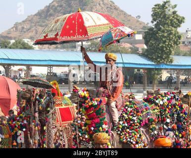 La competencia para decorar los camellos en Pushkar camel fair