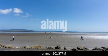 Gente caminando sus perros en Sandymount Strand en Dublín. La playa se encuentra en Ulises de James Joyce. Foto de stock
